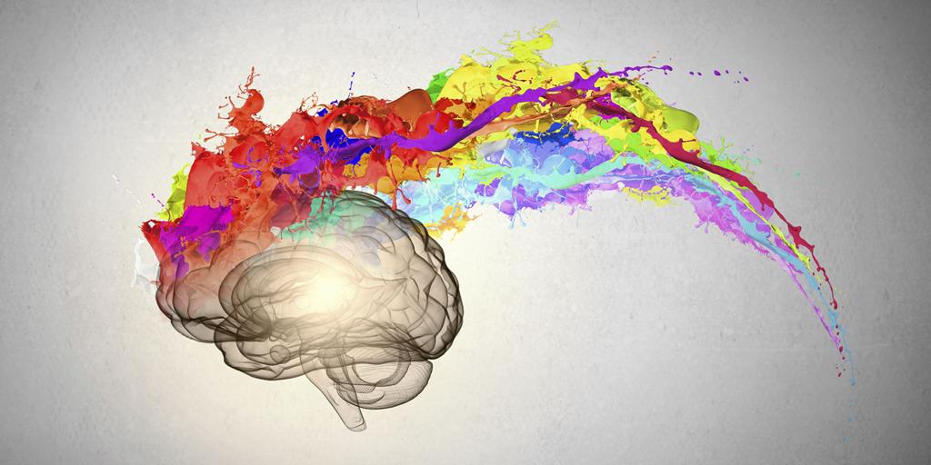 brain-1024