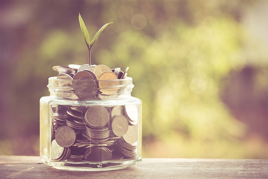 plant-growing-out-of-coins-929